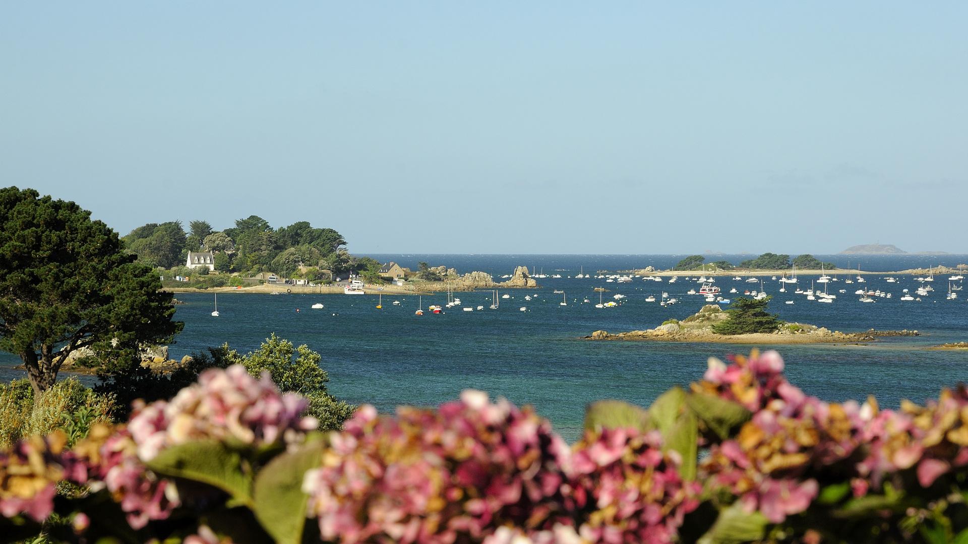 Blick auf den kleinen Hafen von Port Blanc, Penvenan....