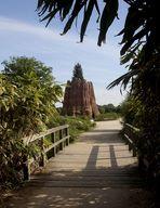 Blick auf den Mammut-Baum