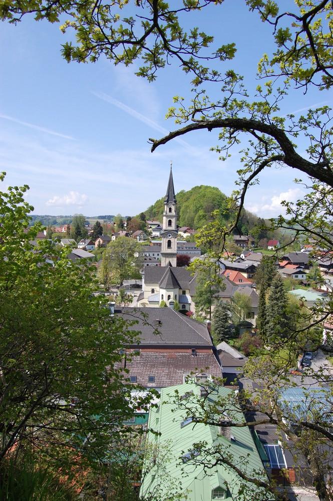 Blick auf den Ort Mattsee