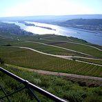 Blick auf den Rhein im Rheingau und auf Bingen.