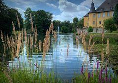 Blick auf den Schlossgartenteich