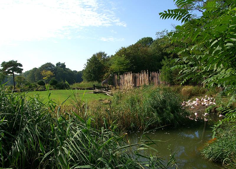 Blick auf den Themenbereich Afrika des Zoo Leipzig