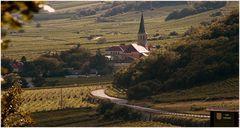Blick auf den Weinort Gumpoldskirchen