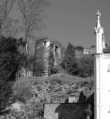 Blick auf die Burg Sayn
