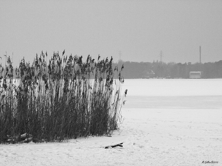 Blick auf die Havel.....