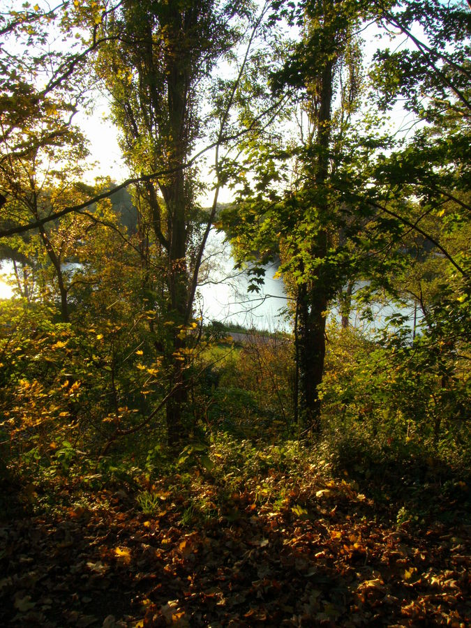 Blick auf die Havel im Herbst