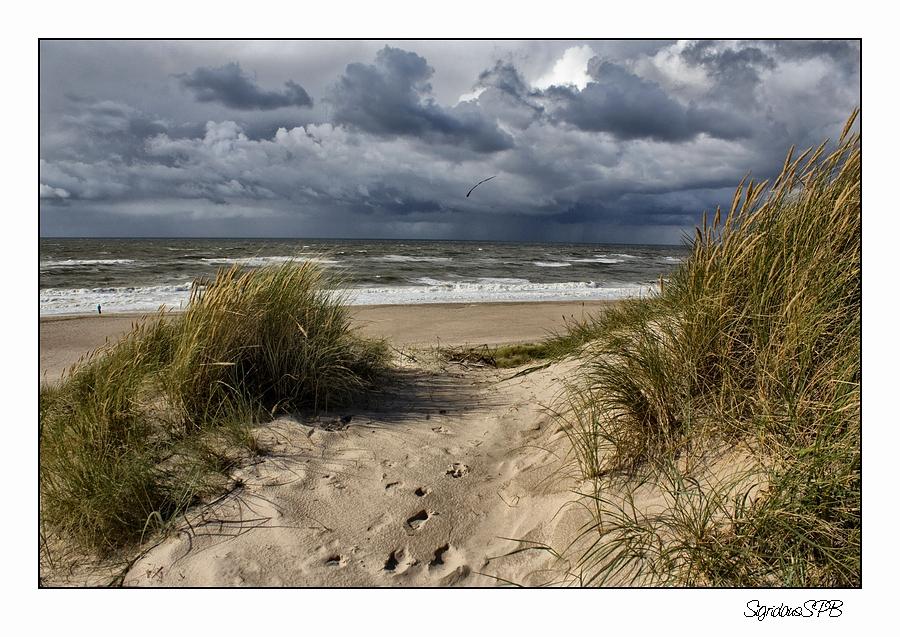 Blick auf die Nordsee...