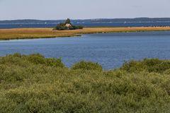 Blick auf die Vogelschutzinsel (Großer Schwerin)Müritz