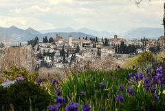 Blick auf Granada..
