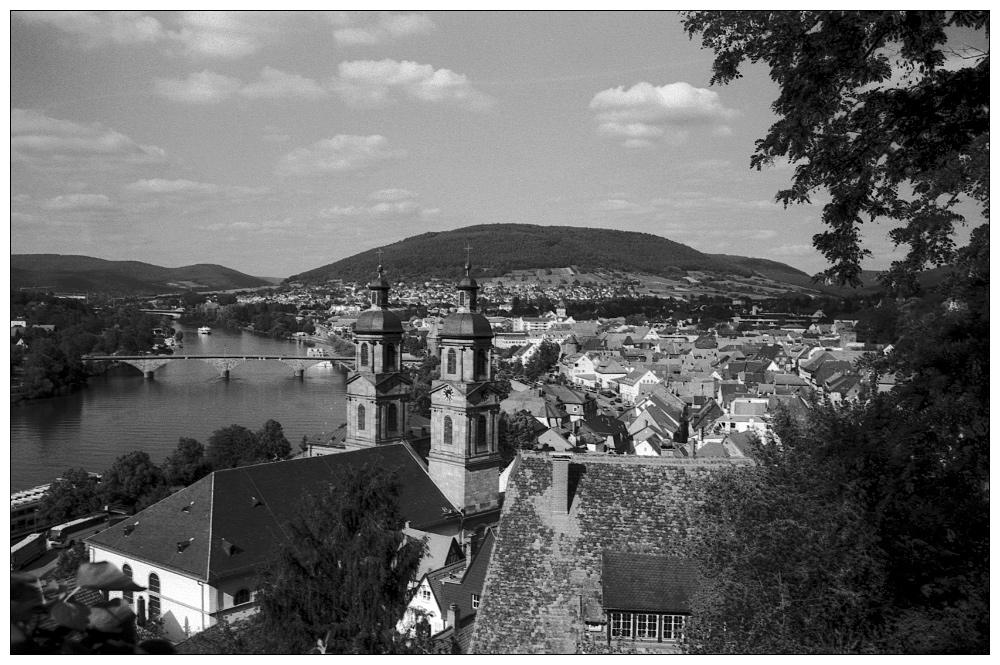 Blick auf Miltenberg in Westfranken