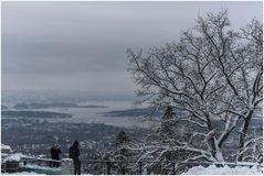 Blick auf Oslo