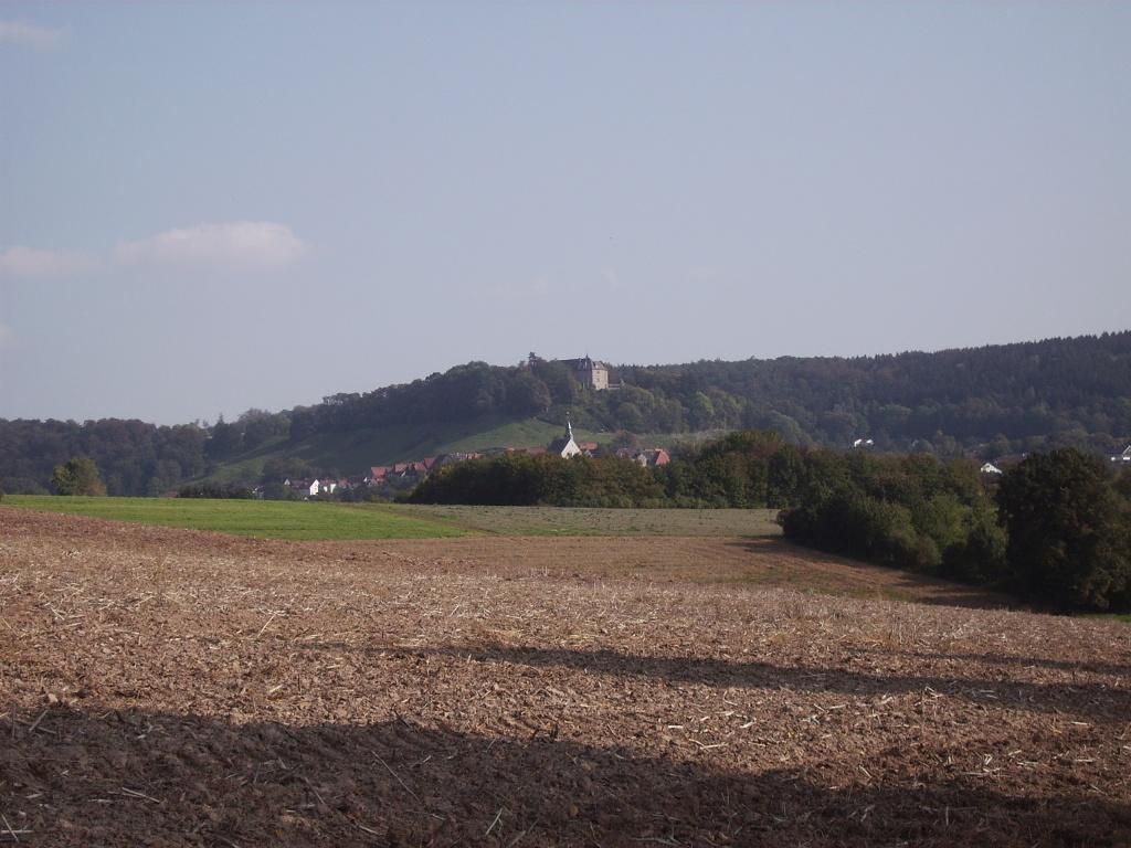 Blick auf Schwalenberg