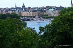 Blick auf Stockholm vom Skansen Park