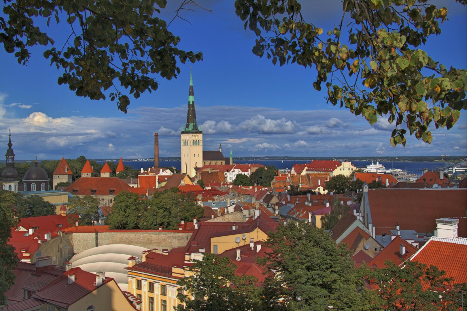 Blick auf Tallinn