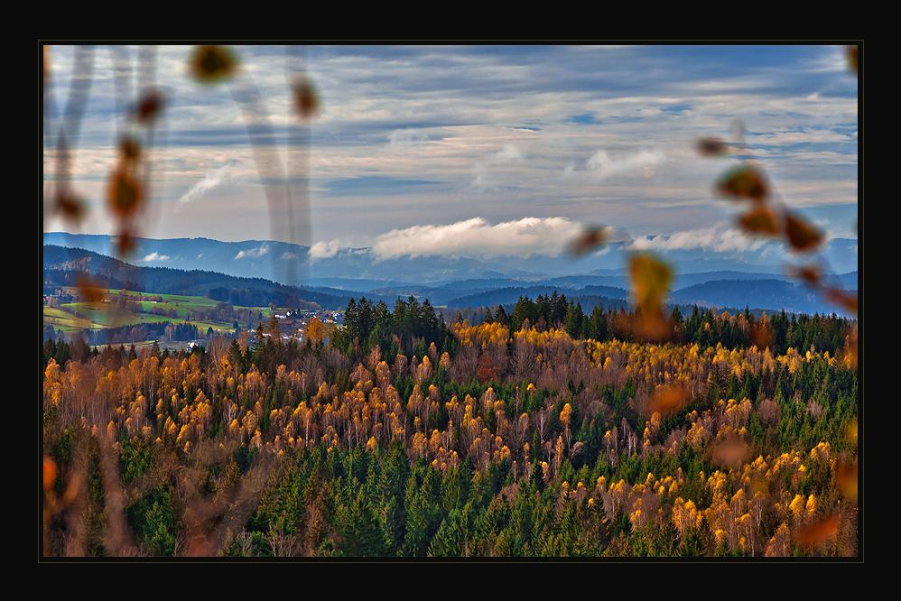 Blick aus dem Bayerwald...