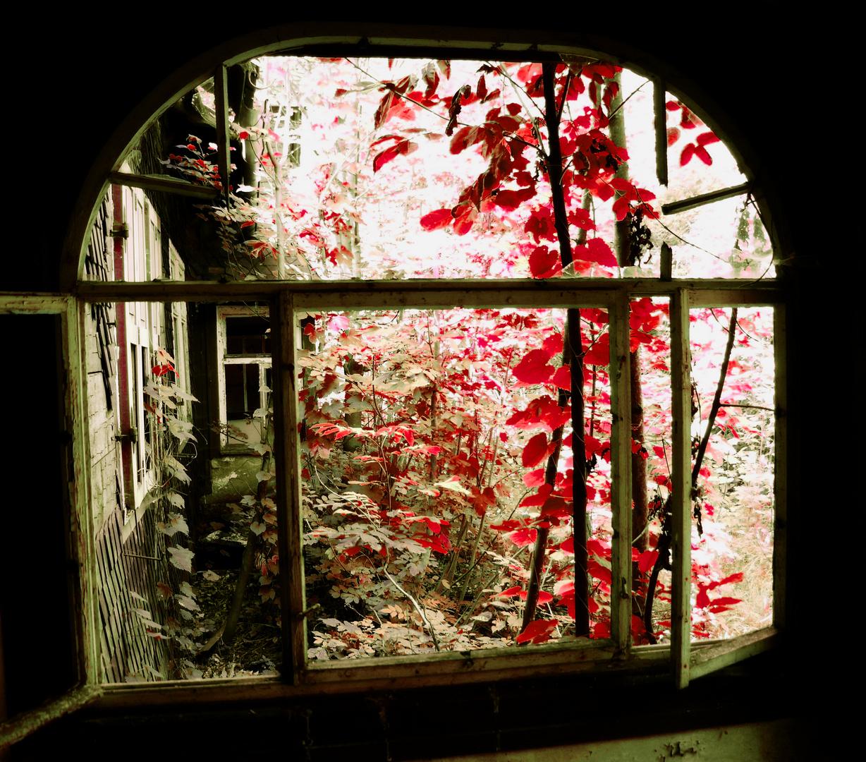 blick aus dem fenster foto bild deutschland europe th ringen bilder auf fotocommunity. Black Bedroom Furniture Sets. Home Design Ideas