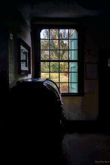Blick aus dem Fenster.