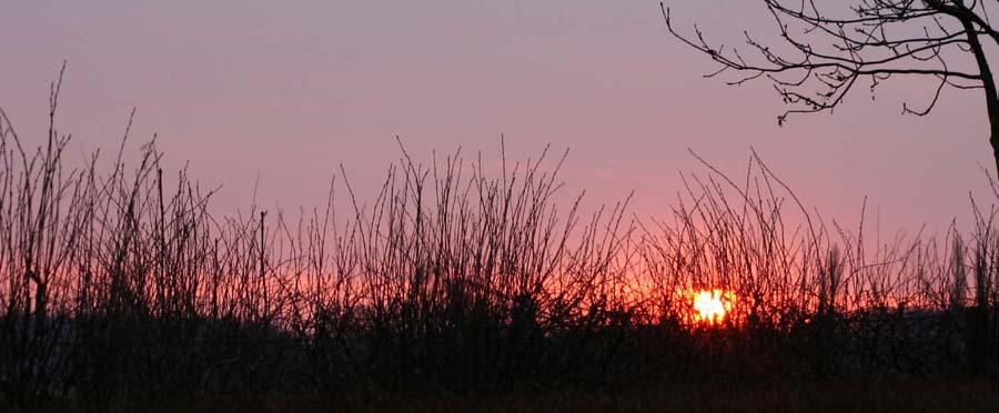 Blick aus dem Wohnmobil morgens um 06.00 Uhr