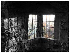 Blick aus der Ronneburg
