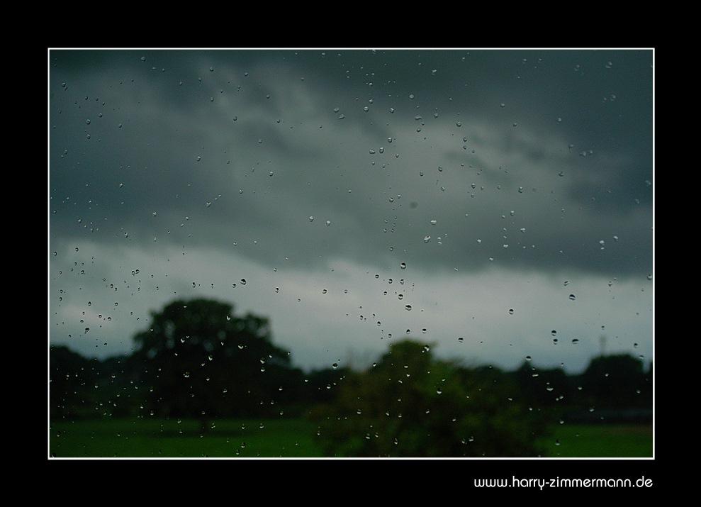 Blick aus meinem Fenster (3)