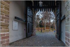 Blick durch das St. Alban-Tor