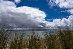 Blick durch den Strandhafer