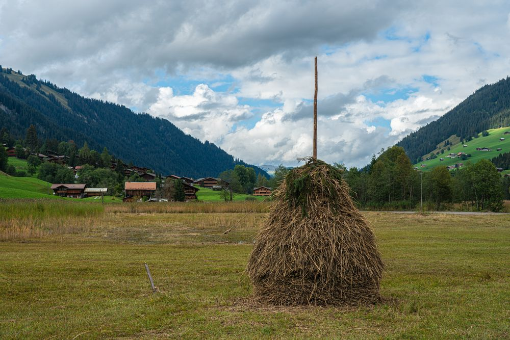 Blick gegen Lauenen bei Gstaad