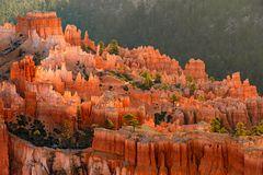 Blick in den Bryce Canyon