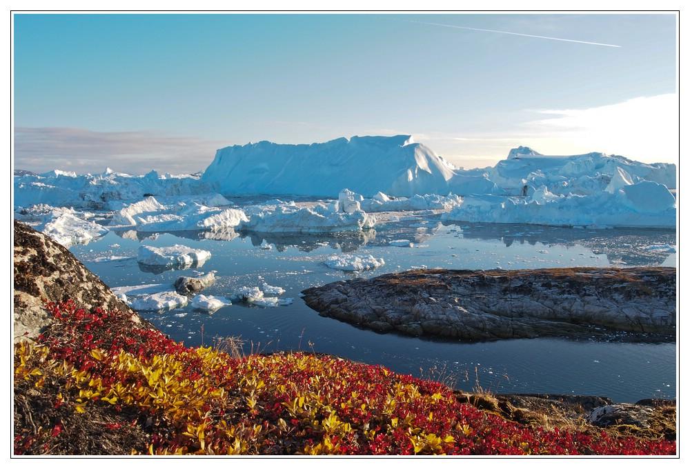 Blick in den Eisfjord