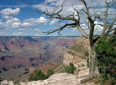 Blick in den Grand Canyon...