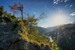 Blick in die Rheinschlucht 1