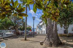 Blick in die Rua Dr. Augusto Botelho Simas zum Hafen