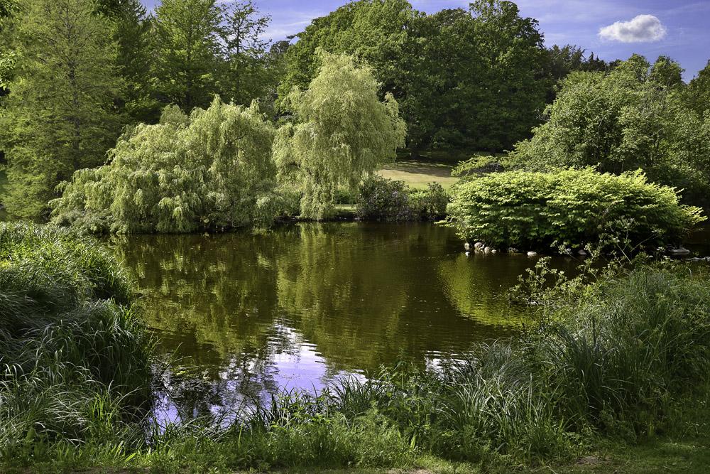 Blick in die schöne Natur und beruhige dein Gemüt.....