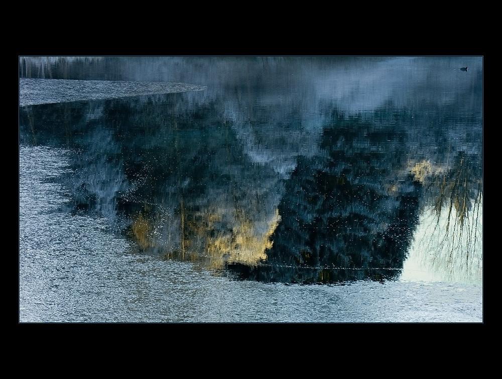 Blick in die Unterwelt... - oder: die Blässralle...