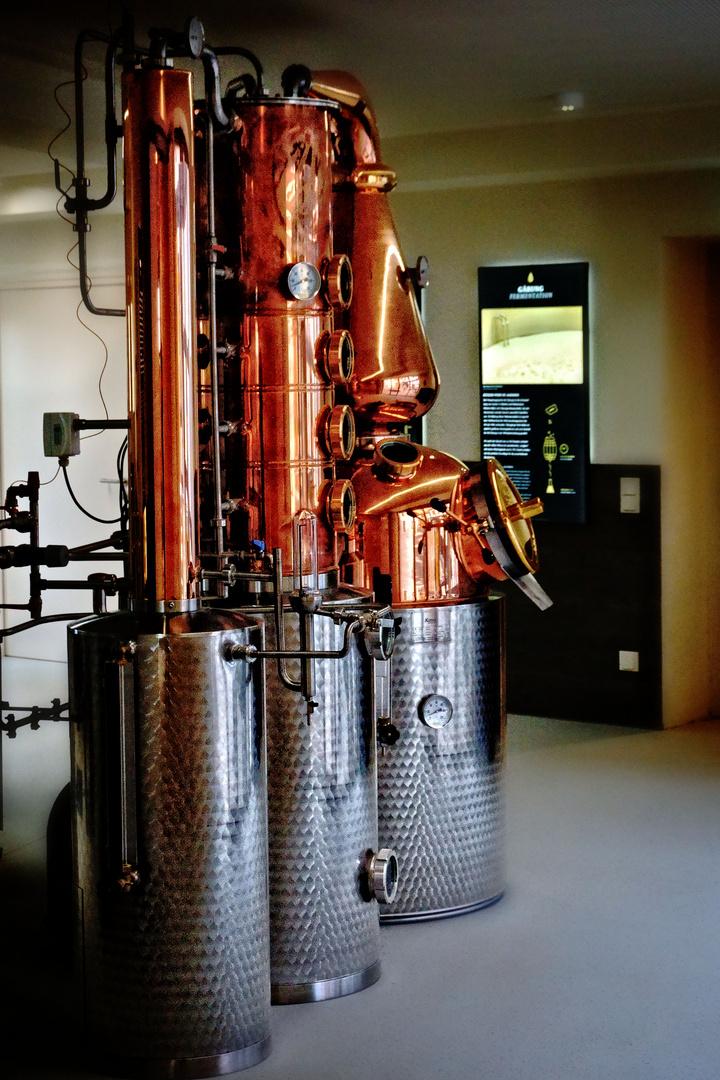 Blick in die Whiskywelt Burg Scharfenstein