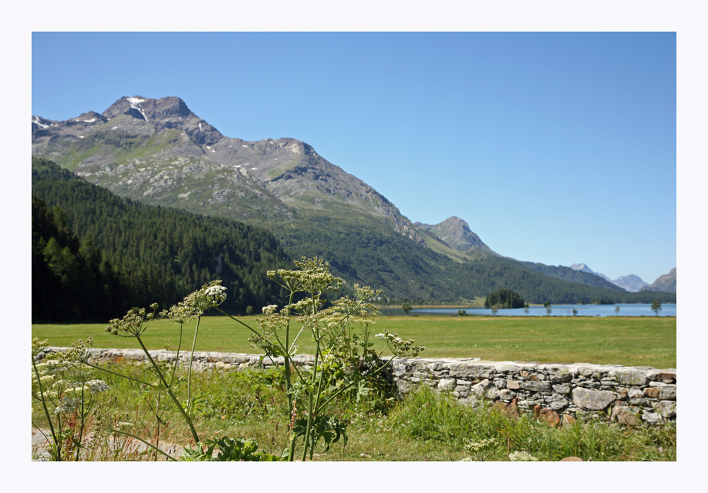 Blick in Richtung Silsersee