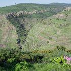Blick ins obere Valle Gran Rey