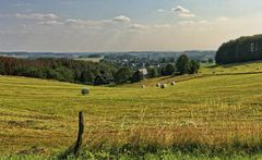 Blick nach Wipperfeld