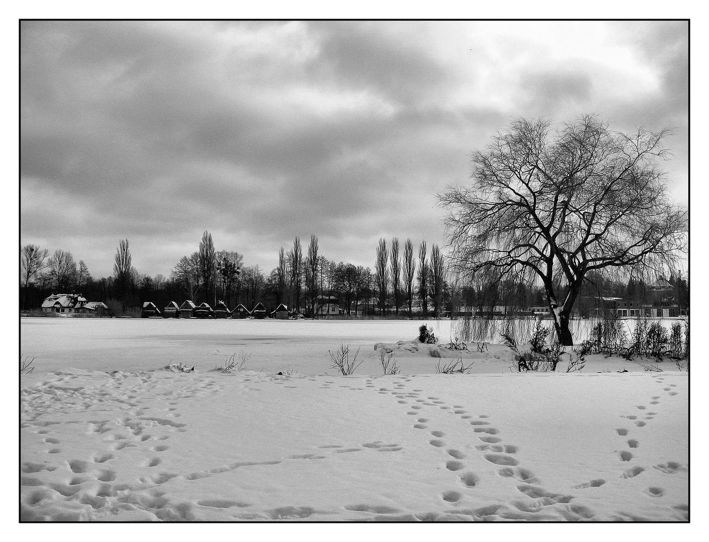 Blick über den Schweriner See