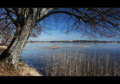 ~ Blick über den See II ~