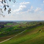 Blick über den Weinbergen, View over the vineyards, Vista sobre los viñedos