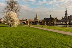 Blick über die Augustusbrücke
