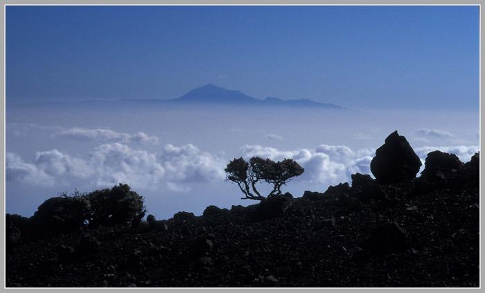 Blick über die Wolken von La Palma nach Teneriffa