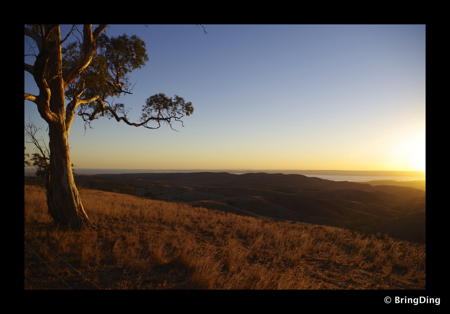 Blick über Flinders Ranges