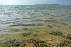 Blick übers Meer auf Äbelö