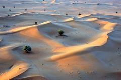 Blick vom Ballon auf die Wüste von Dubai