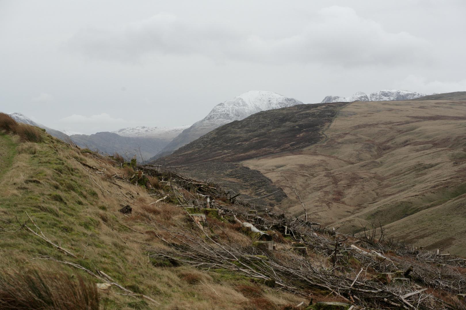 Blick vom Crag Fell auf die Bergkette hinter dem Ennerdale mit Pillar, Haystack etc.