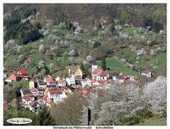 Blick vom Dernbacher Haus