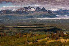 Blick vom Emine Hill Trailhead auf die Alaska Range...