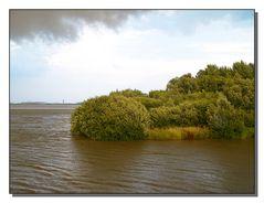 Blick vom Estesperrwerk in Richtung  Mühlenberger Loch. Im...